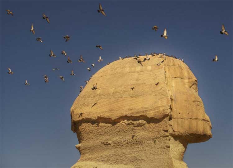 Роль шадуфов в Древнем Египте